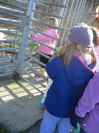A group of children walking through a turnstile.
